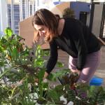 03-02-2016 Harmony et plantes