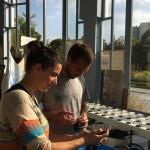 Marion&Nicolas repiquent leurs semis le 13 octobre à l'Orangerie de Belleville