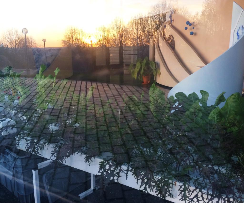 20160112 agri derriere les pavés